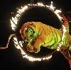 Цирки в Санкт-Петербурге